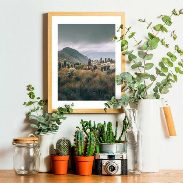 oceta colombie photo impression cadre décoration
